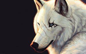 انیمیشن گرگ