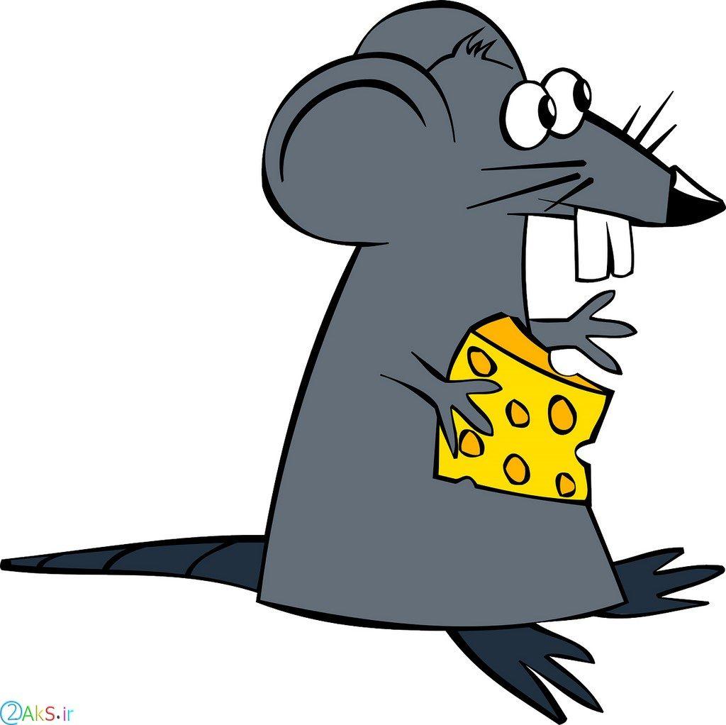 عکس انیمیشنی موش