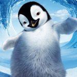 انیمیشن پنگوئن