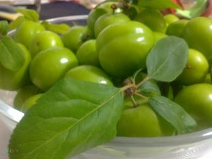 تصاویر گوجه سبز