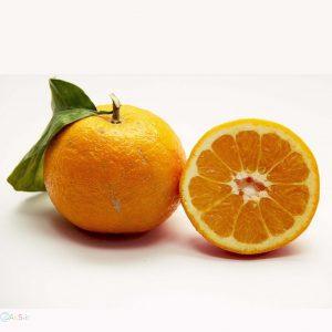 تصویر نارنج