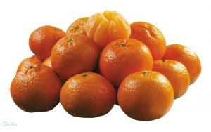 عکس های نارنگی