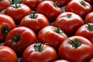 عکس های گوجه فرنگی