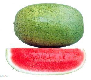 عکس هندوانه