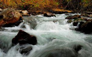 والپیپر رودخانه