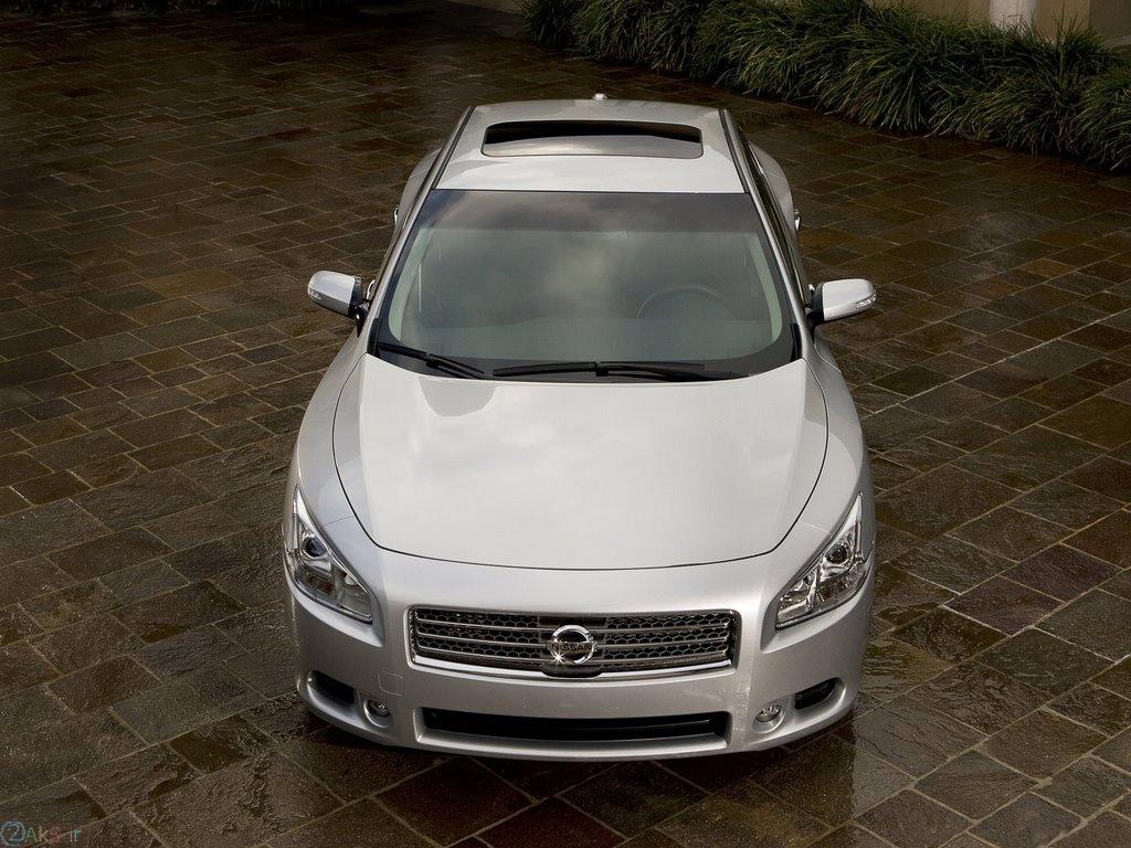 Nissan Maxima سفید